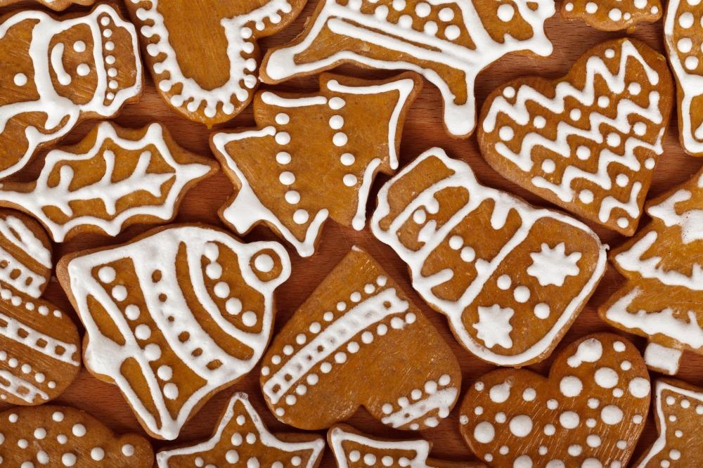 biscuit-83807